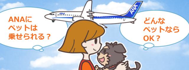ペットと一緒に旅がしたい!ANA(全日空)にペットは乗せられる?