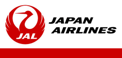 JAL 3531